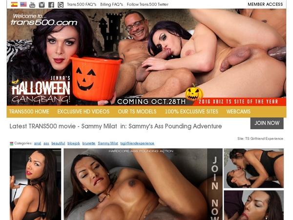 Trans 500 Porn Accounts