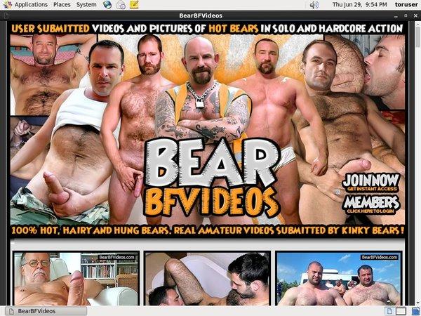 Bearbfvideos.com Accounts Daily