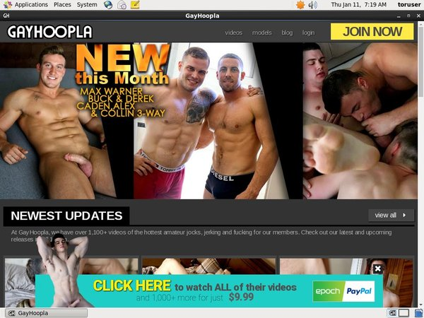 Gay Hoopla Discount Promotion